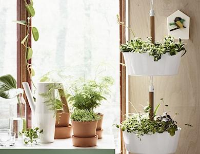 Salon styl Skandynawski - zdjęcie od IKEA