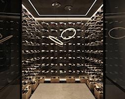 Rezydencja pod Poznaniem - Mała zamknięta czarna kuchnia w kształcie litery u, styl nowoczesny - zdjęcie od Katarzyna Kraszewska Architektura Wnętrz - Homebook