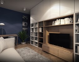K.P. House - Średni niebieski salon z bibiloteczką - zdjęcie od OMCD Architects