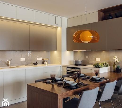 Mieszkanie W Gdyni 2013 średnia Otwarta Szara Kuchnia W