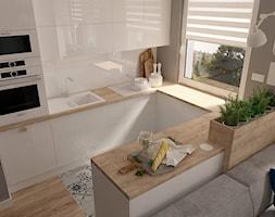 Salon+z+otwart%C4%85+kuchni%C4%85+-+zdj%C4%99cie+od+MOTIF+DESIGN