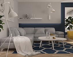Salon+w+bloku+z+wielkiej+p%C5%82yty+-+zdj%C4%99cie+od+MOTIF+DESIGN