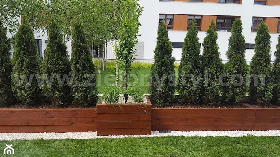 Donice Z Drewna Zdjęcie Od Zielony Styl Projektowanie
