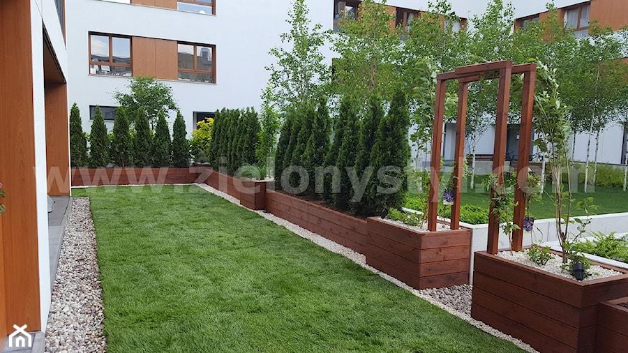 Drewniane Donice Zdjęcie Od Zielony Styl Projektowanie