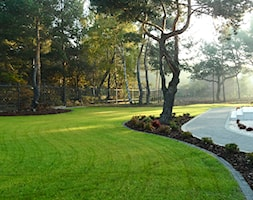 Ogr%C3%B3d+w+lesie+-+zdj%C4%99cie+od+Zielony+Styl+-Projektowanie%2C+realizacja+ogrod%C3%B3w