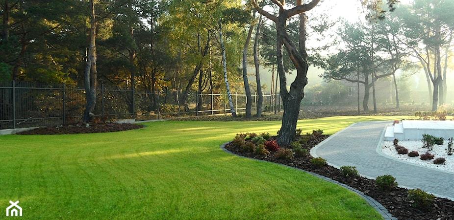 Ogród po zimie - 5 sposobów na wiosenne porządki