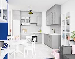 Salon+z+aneksem+kuchennym+Ikea+Bodbyn+-+zdj%C4%99cie+od+Drob+Design