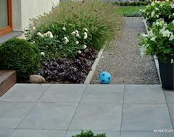 NOWOCZESNY OGRÓD Z KWITNĄCYMI ROŚLINAMI - Ogród, styl nowoczesny - zdjęcie od OGRODOWA AURA - Homebook
