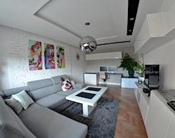 Salon - Gdańsk - 19m2 - 2016 - Mały szary biały salon, styl nowoczesny - zdjęcie od Studio86