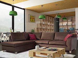 Przytulny i wielofunkcyjny salon