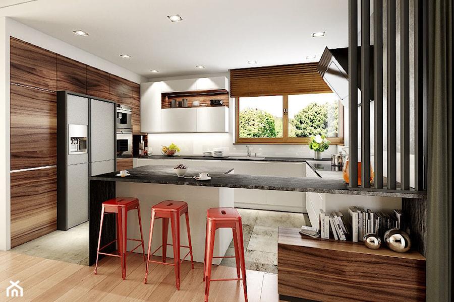 Wizualizacja Kuchni Zdjęcie Od Viva Design Pracownia