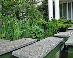 ogród z oczkiem wodnym - zdjęcie od Zielona Przystań