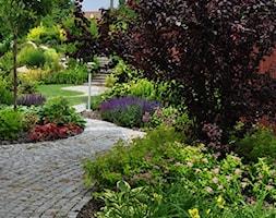 ogród z piwniczką - zdjęcie od Zielona Przystań