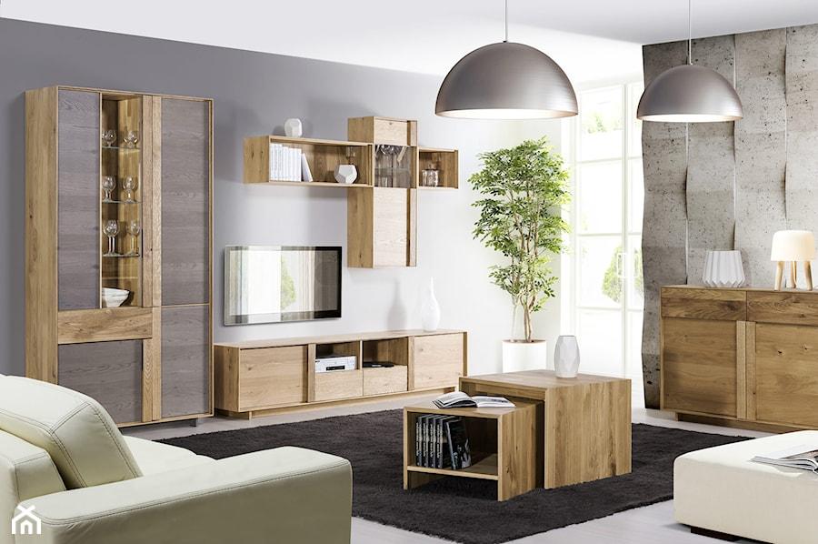 Meble Do Salonu Woodline Home Concept Klose Zdjecie Od Klose