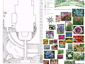Patio i ogród Niezapominajki Pracowania Architektury Krajobrazu - Architekt i projektant krajobrazu