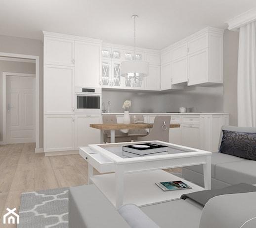 Projekt Salonu Z Aneksem Kuchennym 20m2 Q Housepl