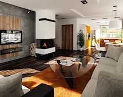Salon w DA Archimedes CE - zdjęcie od Dom.pl Projekty domów