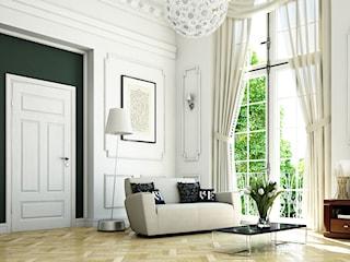 Drzwi nadające luksusowego charakteru wnętrzu. Sprawdź, jakie wybrać!