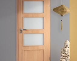 Drzwi wewnętrzne - Mały szary salon - zdjęcie od POL-SKONE
