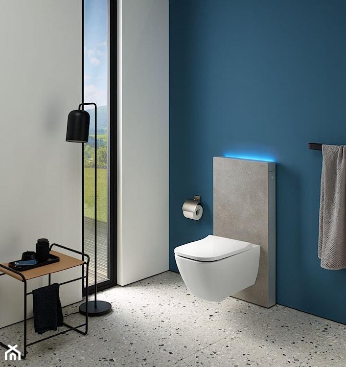 moduł sanitarny, WC geberit, nowoczesna łazienka