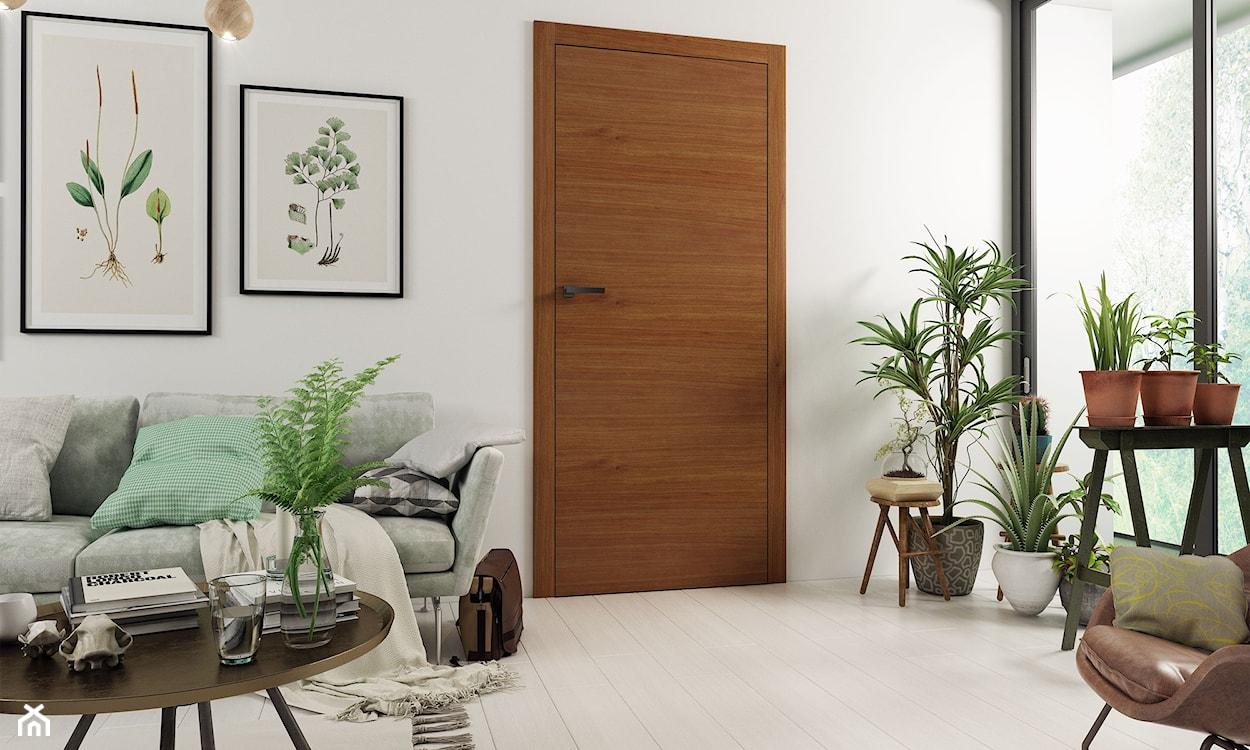 drzwi asilo markoni