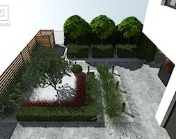 Ogród frontowy - zdjęcie od MIA studio