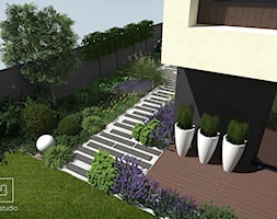 Lawenda+w+ogrodzie+-+zdj%C4%99cie+od+MIA+studio