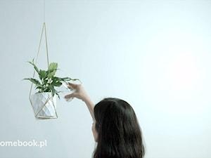 Karolina aletuladnie.blogspot.com - Bloger