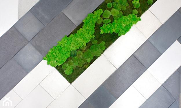 taras z betonu architektonicznego