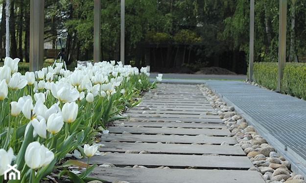 ścieżka z płyt betonowych i kamieni
