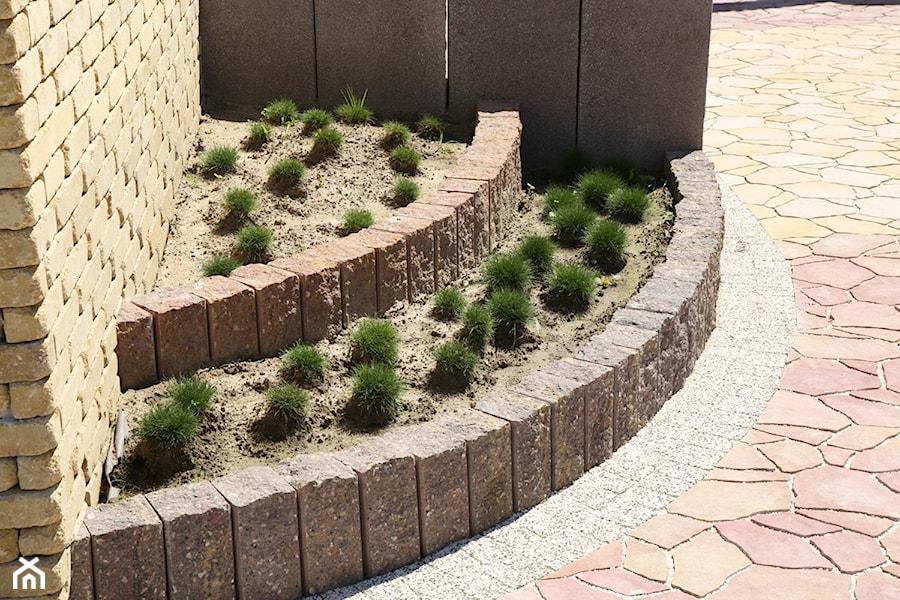Jadar Garden - Średni ogród - zdjęcie od Jadar