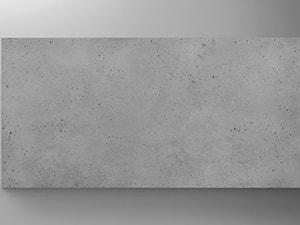 Płyta TECTRA 104 X 52 imitacja betonu - Producent ZICARO