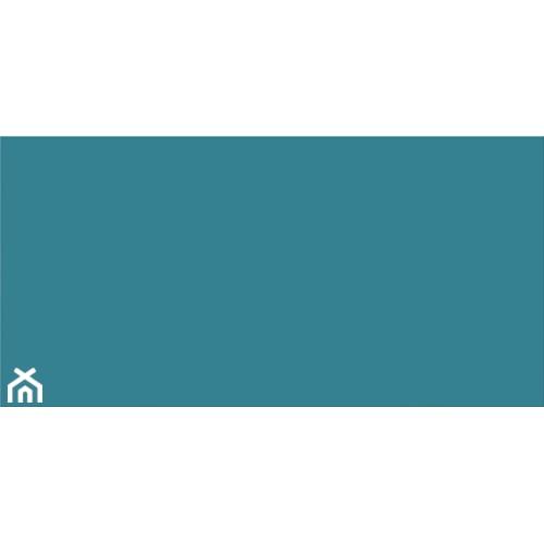 COLOUR BLINK TURQUOISE SATIN 29,8x59,8