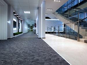 Wnętrze biznesowe - hole, korytarze