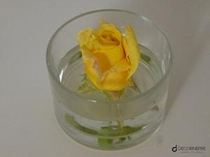 Dekoracje z żywych kwiatów