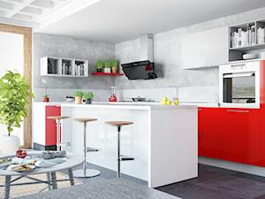 Kuchnia w stylu industrialnym z elementami czerwieni i okapem Merto