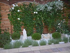 Metamorfoza ogrodu - Mały ogród - zdjęcie od Ewa Szumowska
