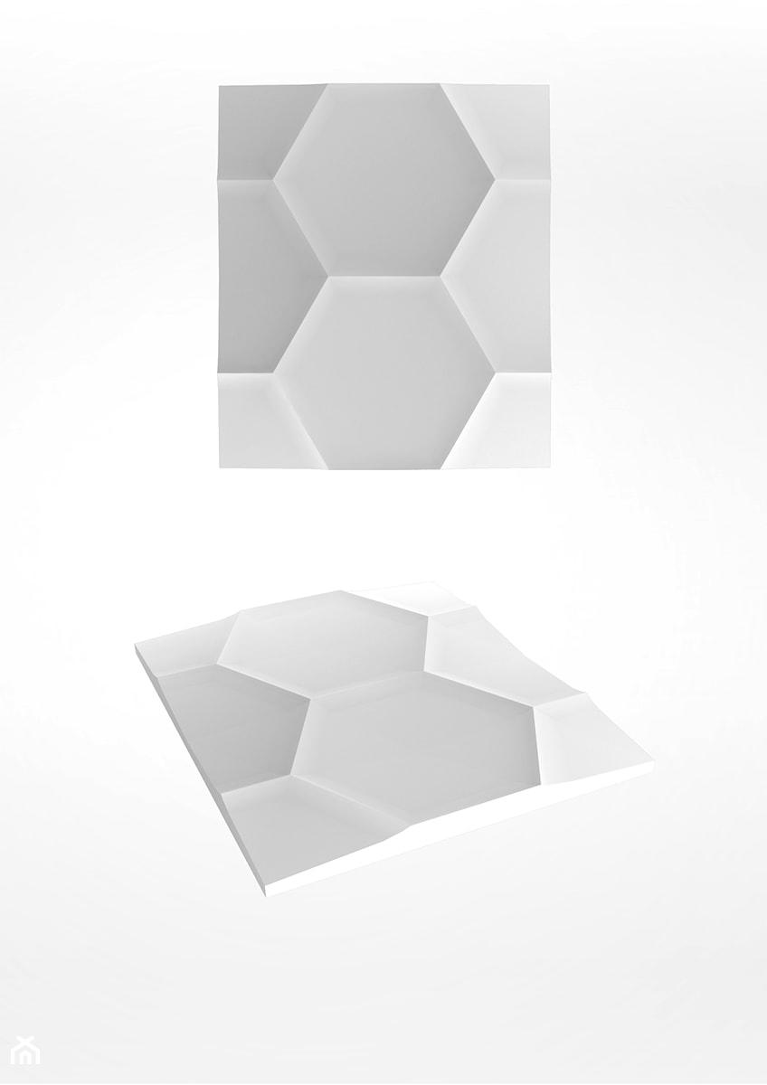 Hexagon - zdjęcie od Artpanel.pl