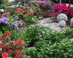 Dekoracje i ozdoby do ogrodu Kobea Ogrody i Bruki Produkcja i sprzedaż - zdjęcie od Ewa Tyrna