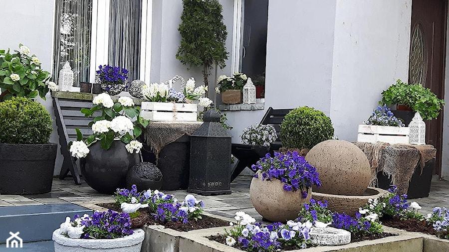 Dekoracje i ozdoby do ogrodu z betonu-Kobea Ogrody i Bruki - Mały ogród przed domem - zdjęcie od Ewa Tyrna
