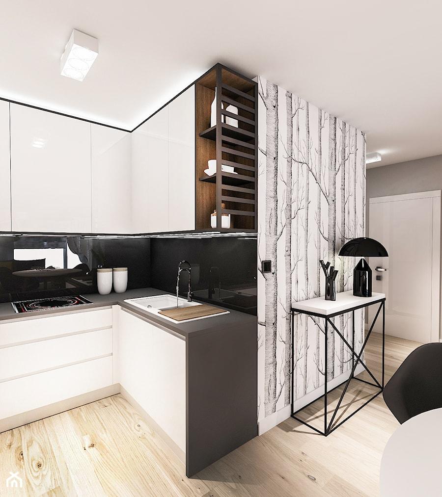 Projekt Mieszkania Austria 2017 Mała Otwarta Czarna