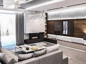 Projekt domu pod Łodzią - Mały szary salon, styl nowoczesny - zdjęcie od BIBI