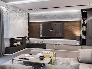 Projekt domu pod Łodzią - Średni biały salon z bibiloteczką, styl nowoczesny - zdjęcie od BIBI