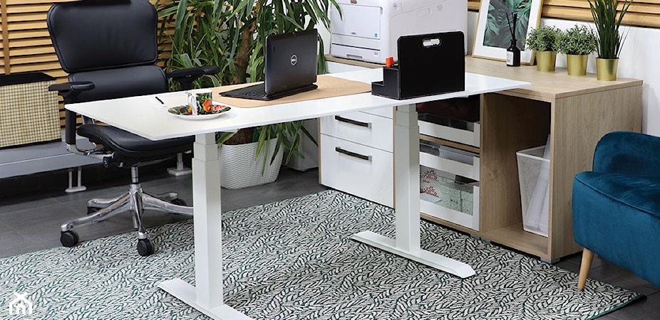 Stelaż elektryczny do biurka – dlaczego go potrzebujesz? Sprawdź i dostosuj biurko do siebie