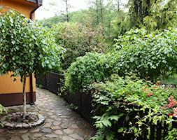 Średni ogród za domem tropikalny - zdjęcie od Joanna Morys-Orządała