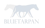 BLUETARPAN - Architekt / projektant wnętrz