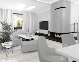 Elegancki salon w szarościach - zdjęcie od MILO studio - Homebook