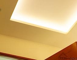 półka z oświetleniem led pod sufitem - zdjęcie od 123budujemy.pl - Homebook