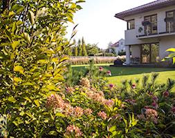 Ogród z kwitnącymi rabatami - Duży ogród za domem, styl nowoczesny - zdjęcie od Zieleń i Przestrzeń - Homebook