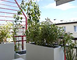 Zielony balkon - Mały taras z przodu domu z tyłu domu - zdjęcie od Zieleń i Przestrzeń